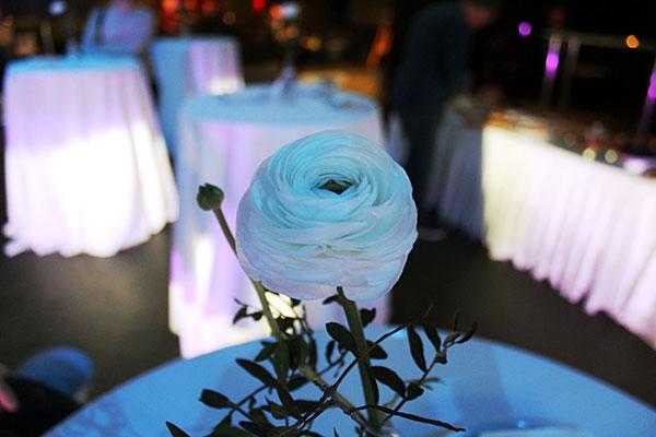 роза на столе посетителей презентации