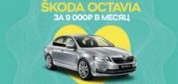 SKODA OCTAVIA за 9 000 рублей в месяц